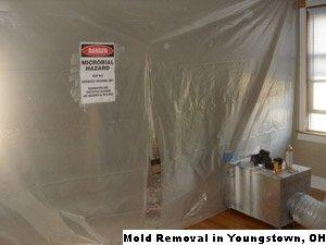 Mold Removal - Youngstown, OH 44502 - (888)547-2290 | ShowMeLocal.com