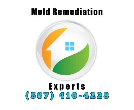 Mold Remediation Experts - Edmonton, AB T5J 3S4 - (587)410-4228 | ShowMeLocal.com