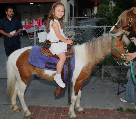 Pegasus Ponies & Petting Zoos - Whittier, CA 90601 - (818)414-7669 | ShowMeLocal.com