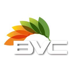 BVC Blinds Cleaning