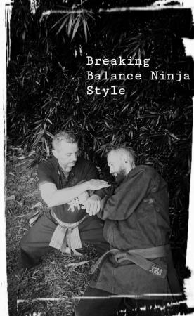 Bujinkan Ninjutsu Sunshine Coast Ninja's - Buddina, QLD 4575 - 0407 002 567 | ShowMeLocal.com