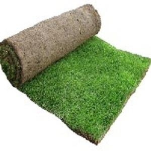 Lush Turf Solutions - Capalaba West, QLD 4157 - (07) 3390 2551 | ShowMeLocal.com