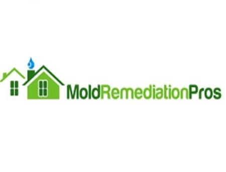 Mold Remediation Pros - Pittsburgh, PA 15213 - (412)307-4797   ShowMeLocal.com
