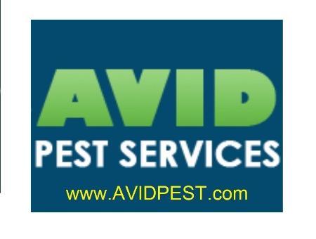 Avid Pest Services - Hamilton, ON L8K 1M1 - (905)902-4222 | ShowMeLocal.com