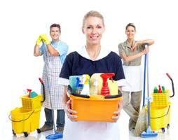 Cleaning Services Toronto Pro - Toronto, ON M5S 2B2 - (647)496-4321 | ShowMeLocal.com