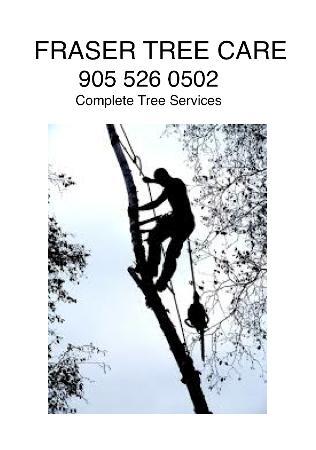 Fraser Tree Care: Hamilton, Stoney Creek, Grimsby, Burlington - Stoney Creek, Hamilton, ON  - (905)526-0502 | ShowMeLocal.com