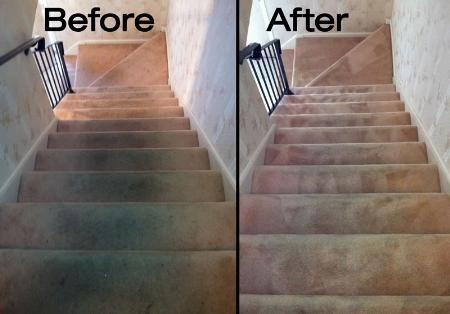 Optus Carpet & Upholstery Cleaning Services - Calgary, AB T3J 1Y4 - (587)719-2469 | ShowMeLocal.com