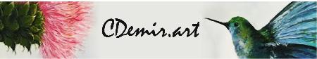 Cherry Demir Art Plenty 0411 434 243